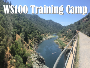 WS100 Training Camp
